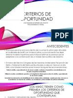 Criterios de Oportunidad (2)