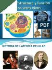 Teoria Celular.pptx