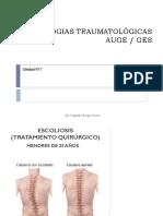 PATOLOGIAS TRAUMATOLÓGICAS AUGE - GES (1).pdf