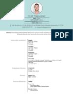 CV_Felipe Porras Díaz_2017.pdf