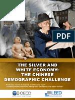 OECD China Report Final
