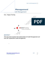 24613908 SAP Credit Management