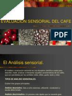 Evaluacion Sensorial Del Café