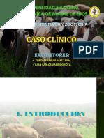 Expo de Caso