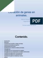 Clonación de Genes en Animales