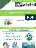 3 1 Entorno Organizacional 17