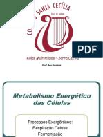 Ana Gardenia-metabolismo Energetico Das Celulasrevisado Ppt
