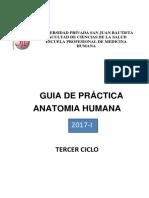 Anatomía Humana practica (UPSJB-2017)