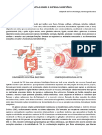 Apostila Sobre o Sistema Digestório