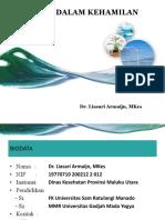MIP 2017 Revisi Dr. Lia