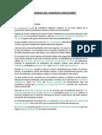 Resumen Histogenesis Pancreas (1)