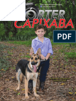 Reporter Capixaba 60