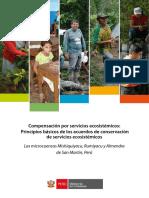 CSE_Principios_basicos_final.pdf