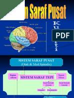 SistemSarafPusat_faal