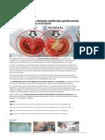 Aprende a Reconocer Los Alimentos Modificados Genéticamente Ya_ ¡y Evita Enfermedadesen El Futuro!