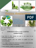 costos ambientales 2