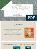 Agentes Infecciosos y Riesgos de Cancer