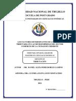 Tesis Maestría - DANIEL ROBLES CAMPOS Cultura Tributaria