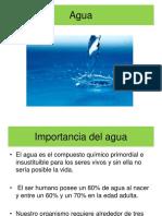 Agua y actividad de agua