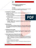 Plan de Auditoria Inicial