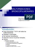 420-2014-03!27!08 Pared Toracica y Malformaciones Broncopulmonares Ppt