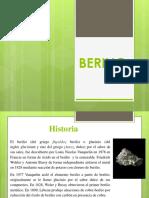 BERILIO (1)