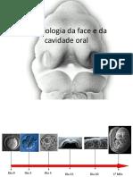 embriologia craniofacial.pdf