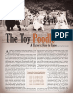 The Toy Poodle - A Historic Rise to Fame