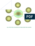 Structura at SDV Doc1.docx