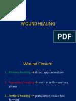 Ppt Wound Healinhg | Wound Healing | Healing