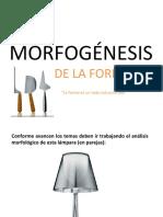2017 Clase 3 Morfologia