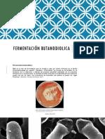 Fermentación Butanodiolica 2.0