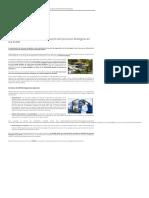 Importancia Caracterización Proceso Biológico