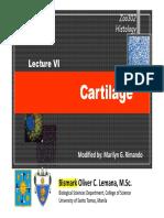 Cartilage Not Evs