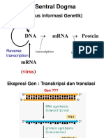 5. Gene Expression -Transcription