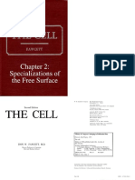Specializations of the Cell Surface