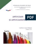 Antociani