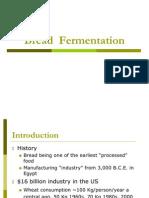 Bread Fermentation