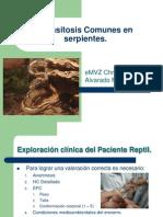 Parasitosis Comunes en Serpientes[1]