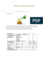Costos de Montaje de un Cultivo de Sacha Inchi.docx