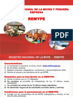 REMYPE 1-5