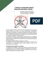 Se Funda el Frente Farabundo Martí de Liberación Nacional (FMLN), Iván Ljubetic