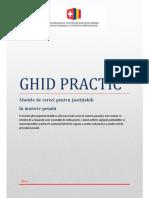Ghid practic pr penala penal.pdf
