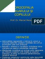 79683034-Hidrocefalia-sugarului
