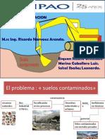 PFD Electroremediacion Revision Tecnica Para Su Aplicacion en Campo