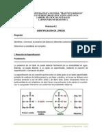 Práctica 2. Identificación de Lípidos