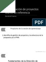 FORMALIZACION DE PROYECTOS MARCOS DE REFERENCIA