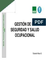 Gestión de La Salud y Seguridad Ocupacional.