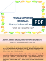 Frutas Silvestres Do Brasil