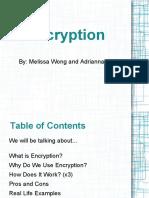 encryptionpresentationfinal-120118083040-phpapp01.pdf